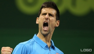 Stepanek reveals Djokovic aim